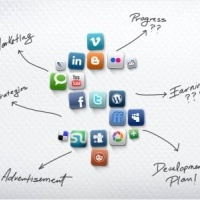 Social Media Managers and organic reach